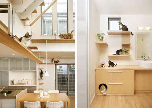 Charming Plans For Building An Indoor Cat House